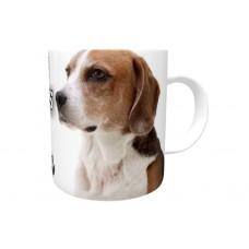 American Foxhound  DOG Ceramic Mug 10fl oz   11
