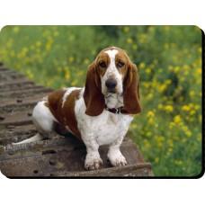 Basset Hound  Dog Mousemat   22