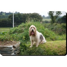 Belgian Shepherd Dog Mousemat   28