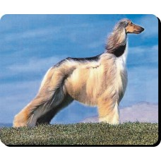 Afghan Hound (Blonde) Dog Mousemat   3