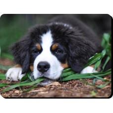 Boston Terrier (standing up) Dog Mousemat   39