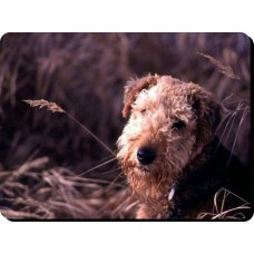 Airedale Terrier Dog Mousemat   4
