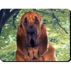 Boxer (young)  Dog Mousemat   43