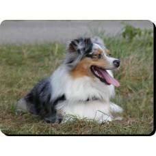 Briard (Black)  Dog Mousemat   46