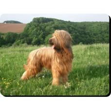 Cavalier King Charles Spaniel (Brown)  Dog Mousemat   58