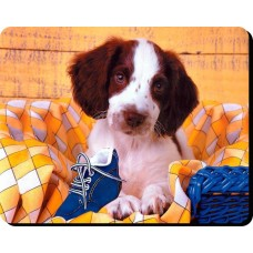 Cavalier King Charles Spaniel (live and White)  Dog Mousemat   59