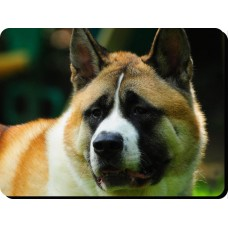 Akita (white coloured)  Dog Mousemat   6