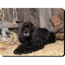 American Cocker Spaniel Tan coloured) Dog Mousemat   9